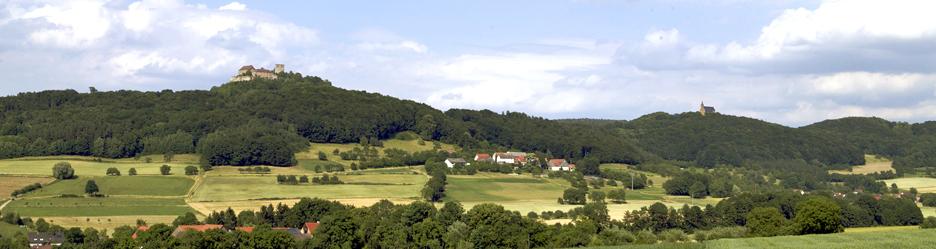 Landkreis Bamberg - Schloss Seehof mit Morgenreif